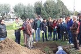 Soil Sampling and testing