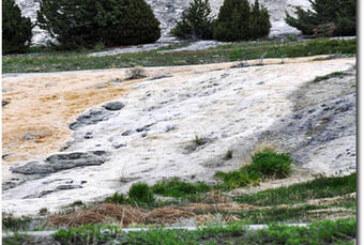 Hydrology & Runoff